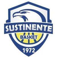 Basket Sustinente